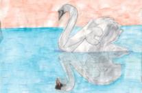 L'oiseau d'eau